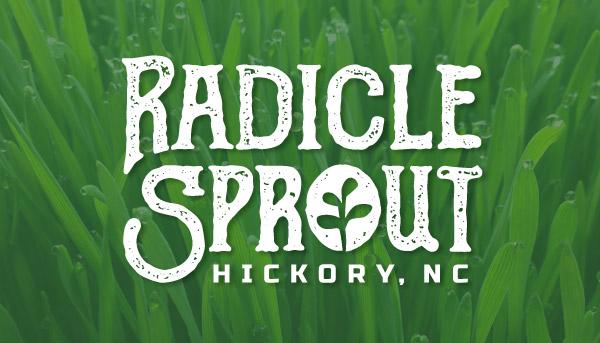 Radicle Sprout Logo Design